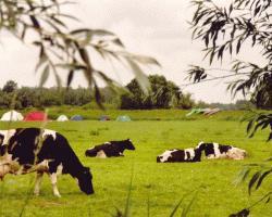 Biesboschhoeve - Drimmelen