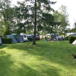 Campingdedrentsepatrijs - Uffelte