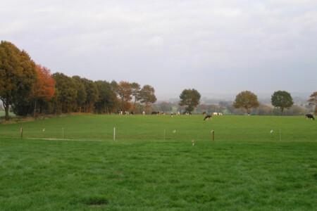 De Hoge Hof - Groesbeek