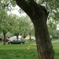 De Kersengaard - St.-Geertruid