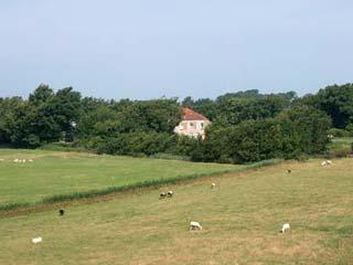Kamperen bij de Boerin - Den Hoorn Texel