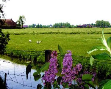 Logeercaravan Vallei Uitzicht - Nijbroek