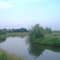 Minicamping Smids - Giesbeek