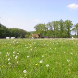 Tönmanshoeve - Winterswijk